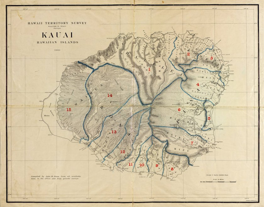 Kauai_etsy